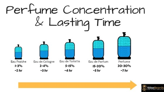 Perfume Concentration & Lasting Time